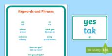 * NEW * Key Words and Phrases A4 Display Poster Polish/English