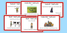 Guided Reading Skills Task Cards Story Elements Arabic