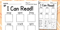 I Can Read! Phase 4 CCV and CCVC Words Activity Sheet