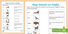 * NEW * Ways Animals are Helpful Activity