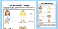 My Body Parts Activity Sheet Spanish