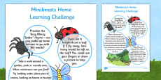 EYFS Minibeasts Home Learning Challenge Sheet Nursery FS1