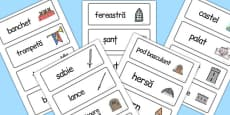 Medieval Castle Role Play Word Cards Romanian