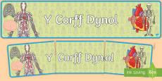 Baner Arddangosfa Y Corff Dynol