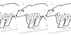 Silent Letters on Polar Bears