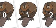 Numbers 0-100 on Beavers