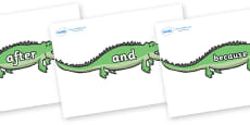 Connectives on Crocodiles