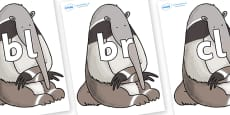 Initial Letter Blends on Anteater to Support Teaching on The Great Pet Sale