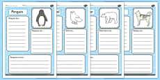 Polar Animals Factfile Activity Sheet