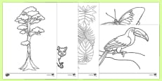 Rainforest Themed Colouring Sheets