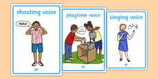 Types of Voice Display Posters