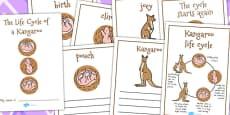Australia - Kangaroo Life Cycle Workbook