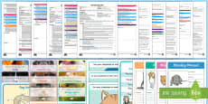 * NEW * EYFS Pets Adult Input Planning and Resource Pack