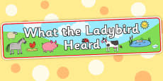 Display Banner to Support Teaching on What the Ladybird Heard