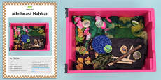 Minibeasts Sensory Tray Card