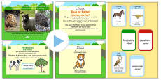 Identifying Herbivores Carnivores and Omnivores PowerPoint Task Setter and Activity Romanian Translation