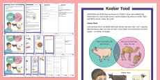 Kosher Food Differentiated Reading Comprehension Activity