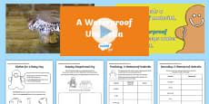 KS1 A Waterproof Umbrella Video Activity Pack