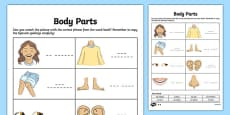 Spanish My Body Body Parts Activity Sheet