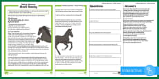 KS2 Black Beauty Mother's Day Inference Differentiated Go Respond Activity Sheets