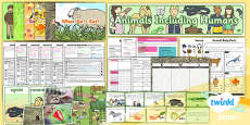 PlanIt - Science Year 1 - Animals Including Humans Unit Pack