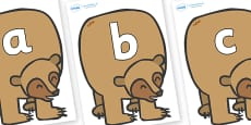 Silent Letters on Brown Bear to Support Teaching on Brown Bear, Brown Bear
