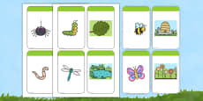Minibeasts and their Habitats Matching Cards