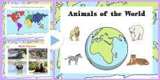 Animals From Around The World PowerPoint
