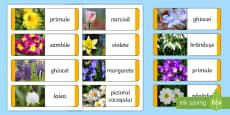 Flori de primăvară Cartonașe tip domino