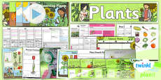 PlanIt - Science Year 2 - Plants Unit Pack