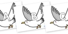 A-Z Alphabet on Seagulls