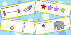 'Show Me The...' Basic Concept Cards Activity (Set Three)
