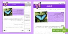 الفراشة - أوراق عمل متمايزة للفهم القرائي