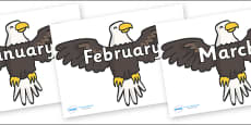 Months of the Year on Eagles