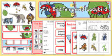 Story Sack to Support Teaching on The Bad Tempered Ladybird