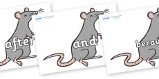 Connectives on Rats
