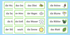 Growth Topic Word Cards German