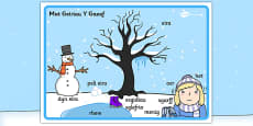 Winter Scene Word Mat Welsh Translation