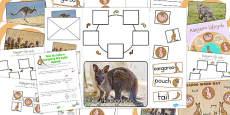 Australia - Kangaroo Life Cycle Lapbook Creation Pack