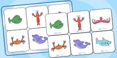 Matching Cards and Board to Support Teaching on Commotion in the Ocean