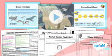 PlanIt - Science Year 2 - Scientists and Inventors Lesson 5: Rachel Carson Lesson Pack