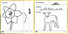 Easter Colouring Images Spanish