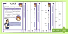 * NEW * KS2 Pet Care of a Hamster Differentiated Reading Comprehension Activity