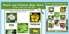 Plants and Flowers Hunt Sheet Arabic Translation