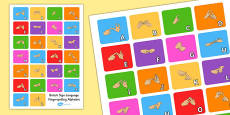 A4 British Sign Language Fingerspelling Alphabet Poster