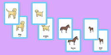 Animals and Their Young Matching Cards Romanian Translation