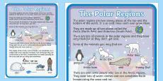 Polar Regions Large Information Poster