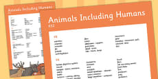 KS2 Animals Including Humans Scientific Vocabulary Progression Poster