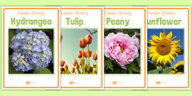 Garden Flower Photo Display Posters