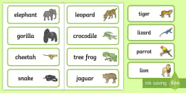 Jungle Animal Themed Word Cards